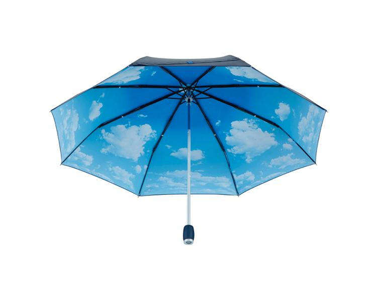 Mini Parapluie Windfighter